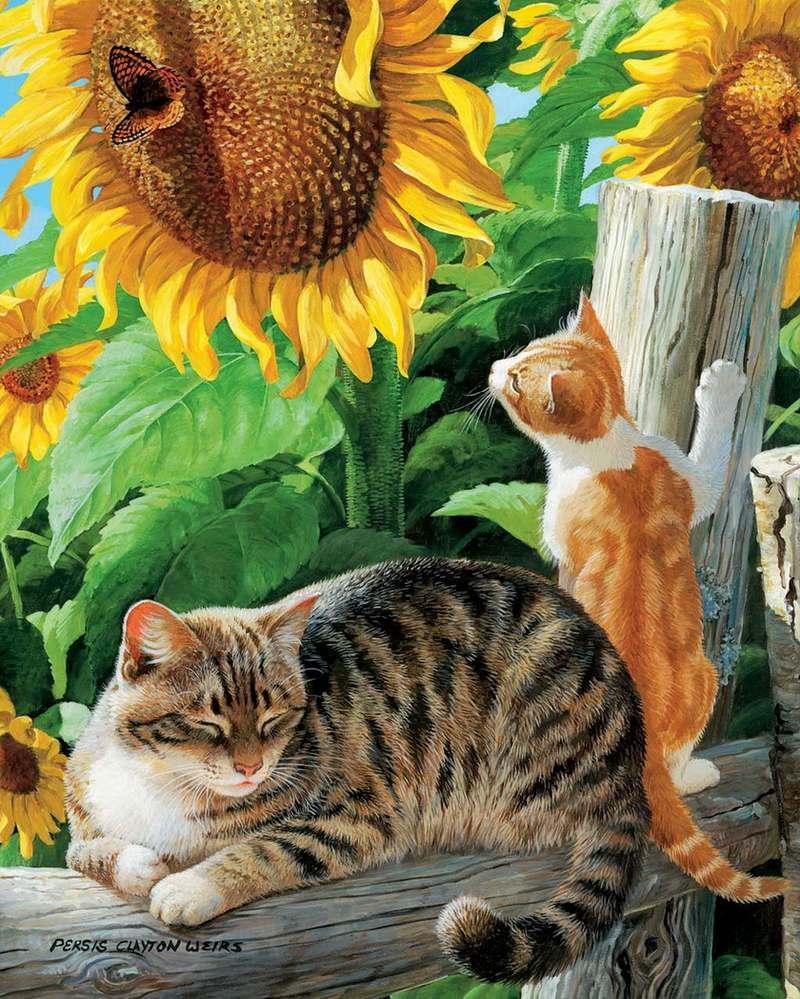 http://pic.levkonoe.com/images/levkonoe/0b9e87be7cdf77orig.jpg
