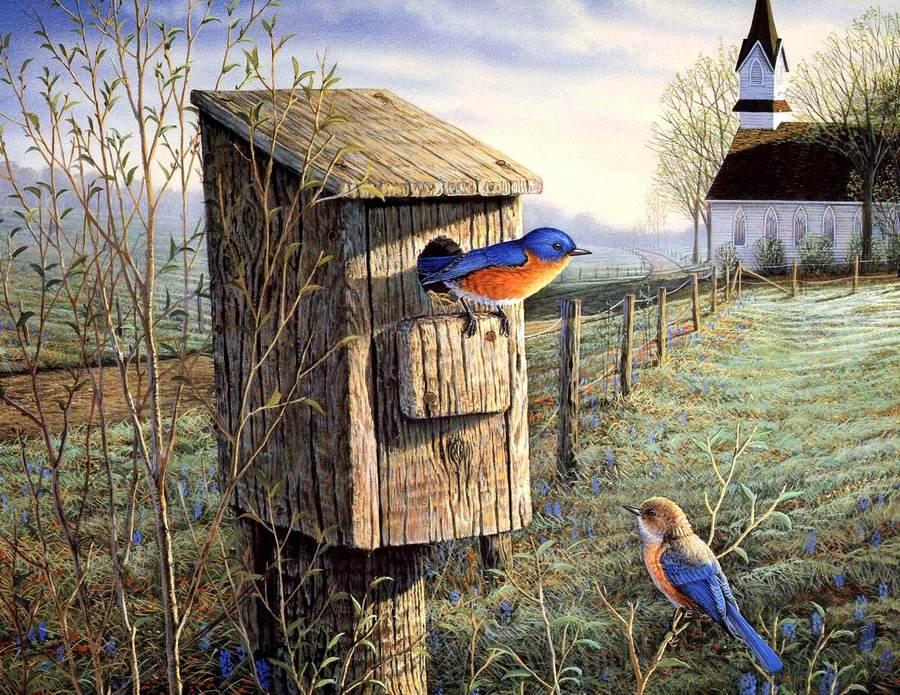 Птицы весной картинки 1